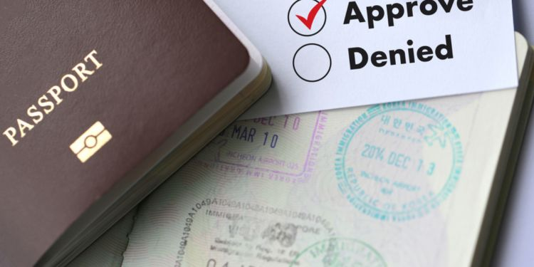 INFORMATION ABOUT THE VISA APPLICATION